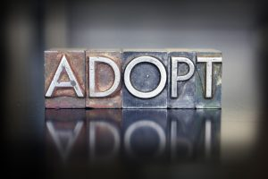 Adopt written on plaque
